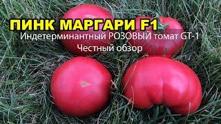 Индетерминантный РОЗОВЫЙ томат ПИНК МАРГАРИ F1 (ДЖИТИ-ИР1). Честный обзор