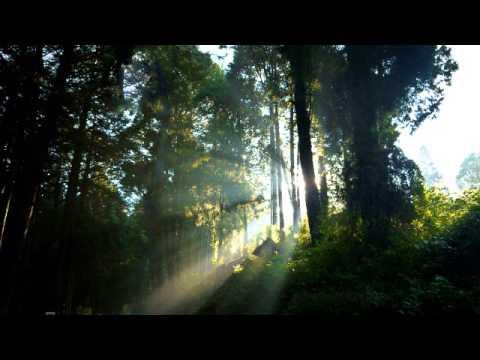 Suite No. 1 In G Major: Prelude - Johann Sebastian Bach.