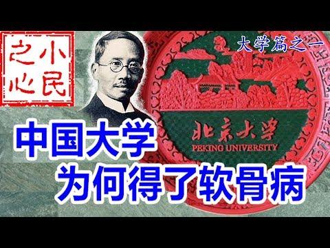 中国大学为何得了软骨病 2019.04.18 No.375