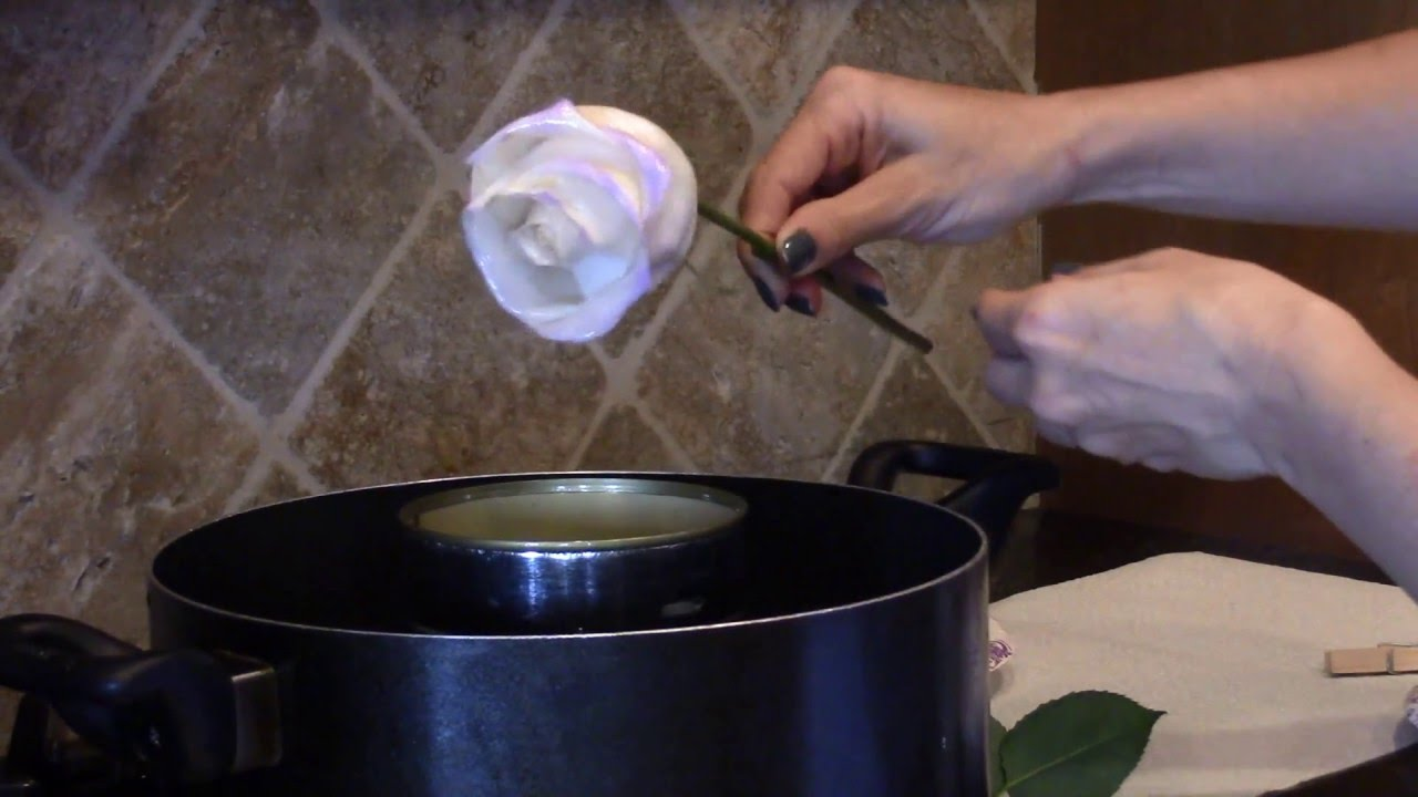 Fresh Flowers Dipped In Wax For Preservation Preserving Flowers