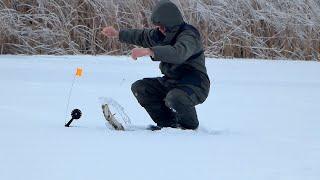 Поставил жерлицы где в прошлом году ловил и не прогадал Ловля щуки в декабре