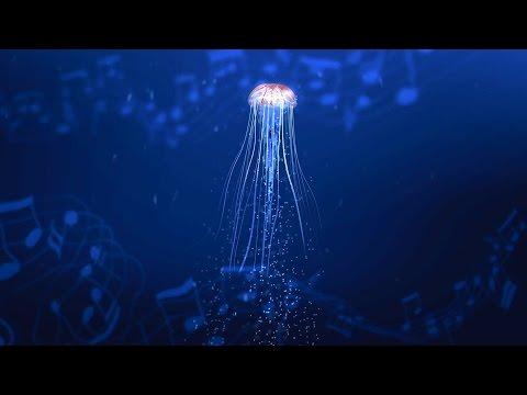 Biotite  advertising clip