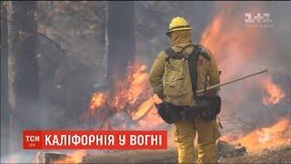 Трамп вперто не хоче визнавати, що природа пожеж у Каліфорнії - не лісова