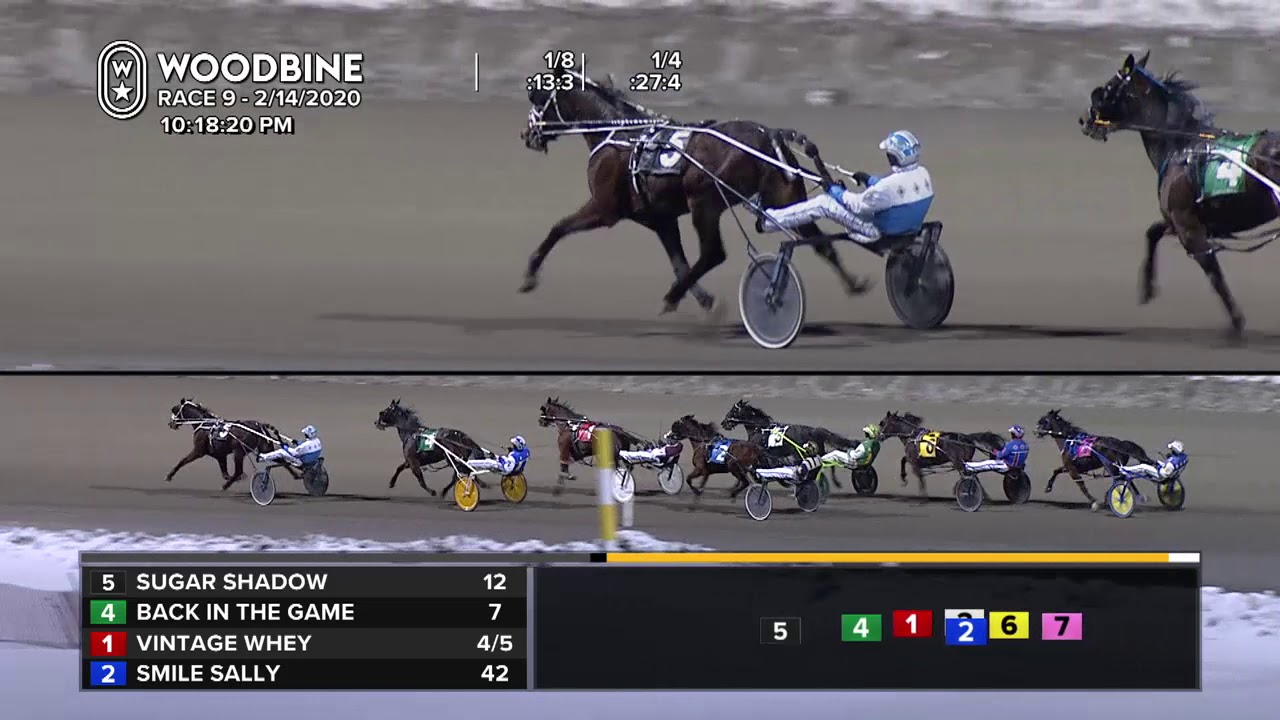 Woodbine, Mohawk Park, February 14, 2020 Race 9