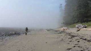 Beach near Walbran on WCT, Vancouver Island, BC, Canada
