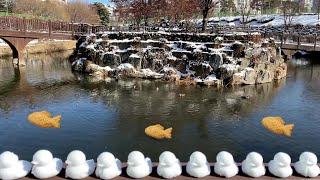 일상 조각 브이로그   눈오리 만들기   아웃백 토마호…
