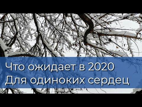 2020 Отношения: Для свободных и Одиноких дам