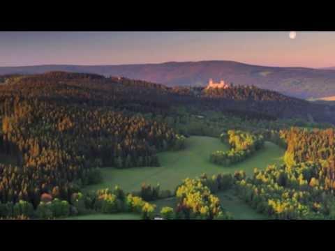 Smetana - From