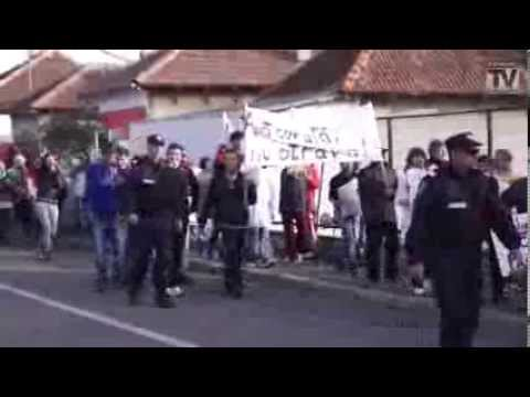 Protest Gaze de Sist Mangalia 11 noiembrie 2013