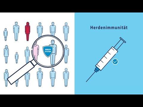 Impfen Aktive Und Passive Immunisierung Youtube