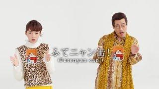 桐谷美玲、PICO太郎Y!Mobile「平價SIM PPAP」「冬之貓罐PPAP」篇【日本...