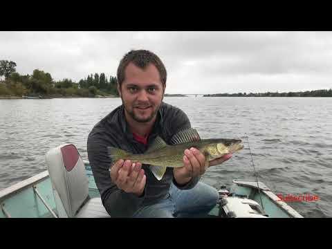 Northern Canada Walleye Fishing (HILARIOUS Bonus Catch)