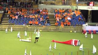 AWC Luxembourg 2014 - Roland & Ammy, small individual jumping, 1st place