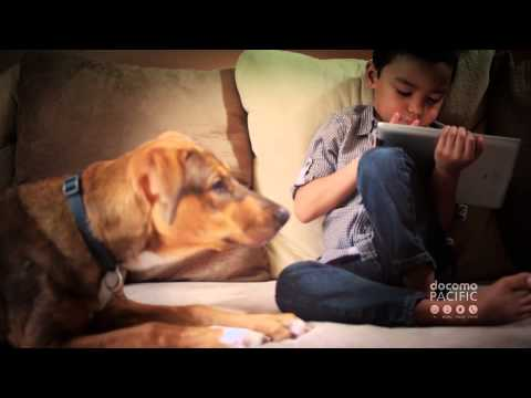 Talking Dogs | 30Mbps | Guam DOCOMO Pacific Commercial