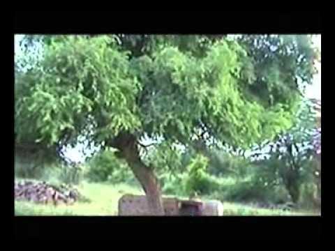 Kheteshwar Darshan 3