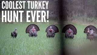 MOST EPIC TURKEY HUNT W/ A Bow EVER FILMED| Bowmar Bowhunting |