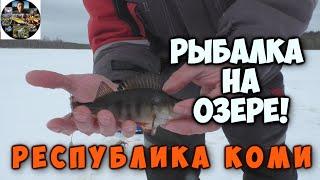 Зимняя рыбалка на озере Ловим окуня на мормышку Ставим донки на налима и щуку Республика Коми