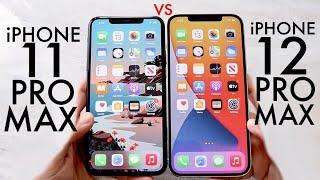 iPhone 12 Pro Max Vs iPhone 11 Pro Max! (Comparison) (Review)