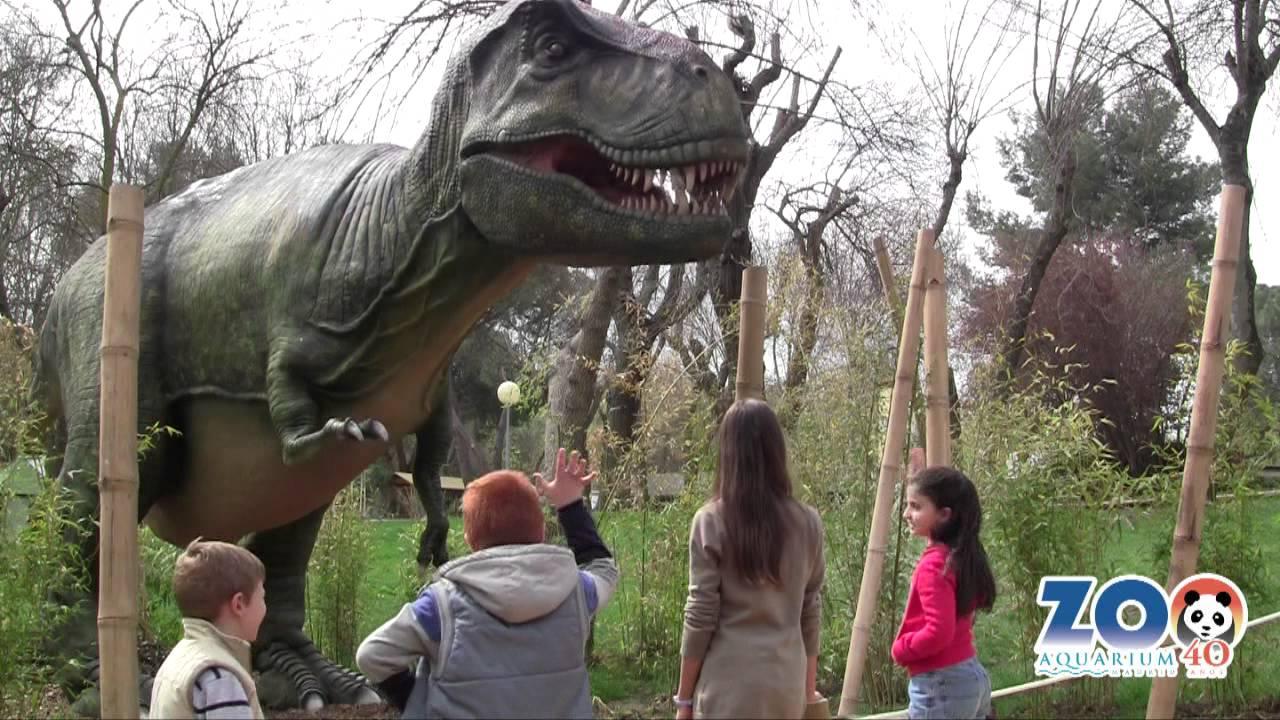 No des de comer al tiranosaurio rex zoo madrid youtube - Comer en la casa de campo ...