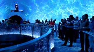City of Dreams Macau - Dragon's Treasure - Falcon's Treehouse Attraction Design Services
