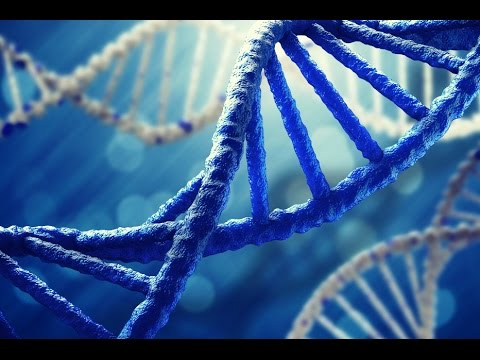 DNA Science -