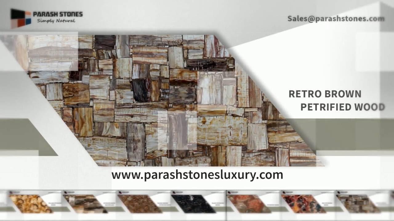 Petrified Wood Slab | Petrified Wood Countertop | Table Top | Kitchen Top