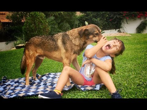 OMG!! WHAT IS THE DOG DOING TO THE KID?