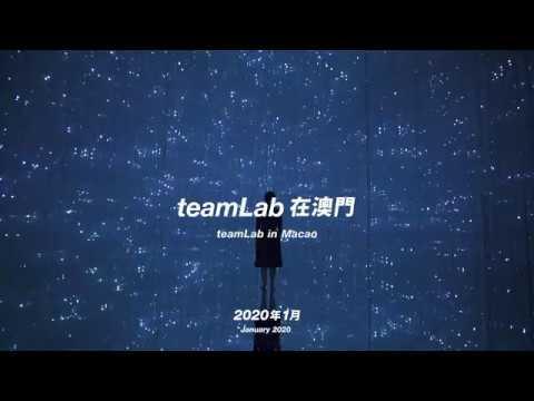 teamLab Unveils Plans to Open Immersive Art Museum in Macao