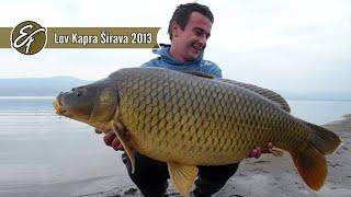 Lov kapra - Zemplínska Šírava Október 2013