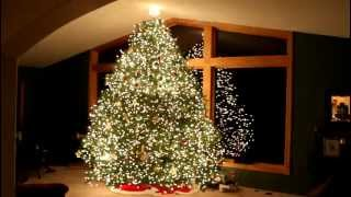 Gangnam Style Christmas Tree Light Show - Psy - Wawra  2012 Hd