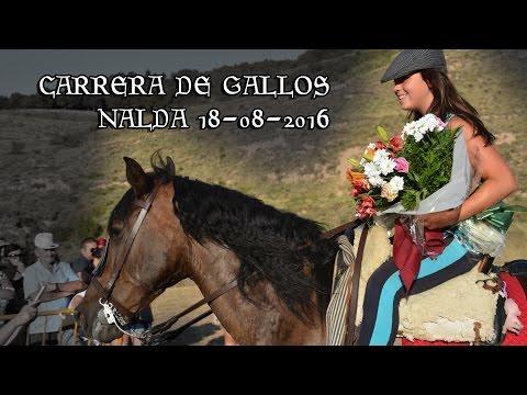 Carrera de Gallos en Nalda 2016
