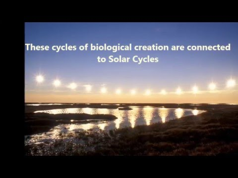Cycles of Creation: and incidentally