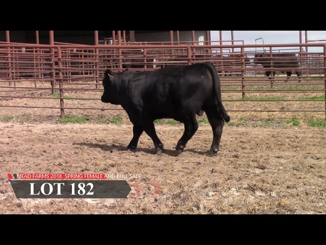 Mead Farms Lot 182