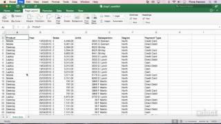 Orientation - Excel 2016 Mac Level 1