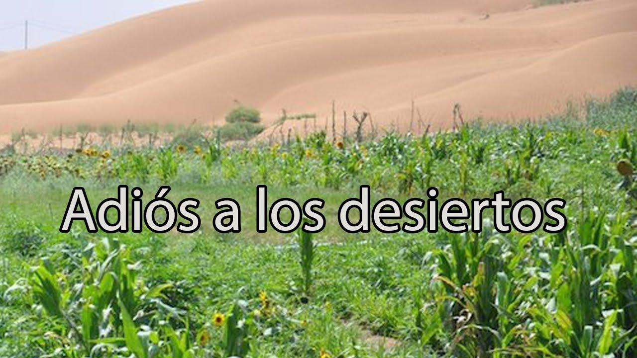 China convierte sus desiertos en tierra fértil