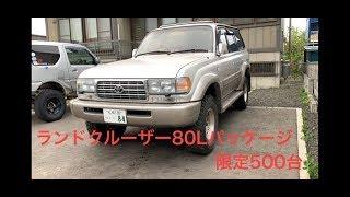 トヨタ ランドクルーザー80Lパッケージ限定500台の車のバンパー板...