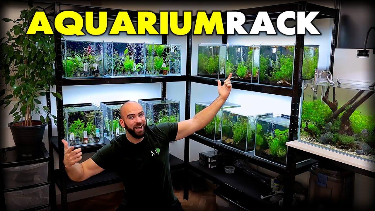 making a new aquarium rack for nano fish shrimp md fish tanks