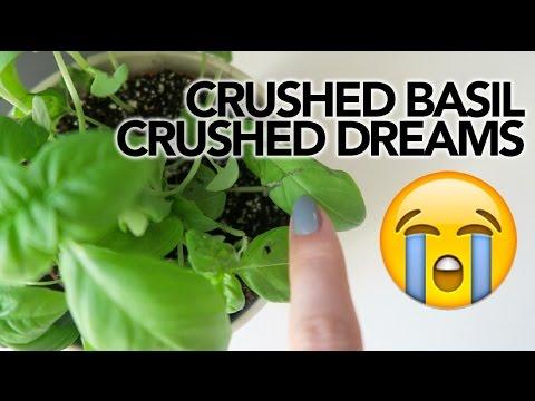 CRUSHED DREAMS    ep.54 LifeWithSylvia