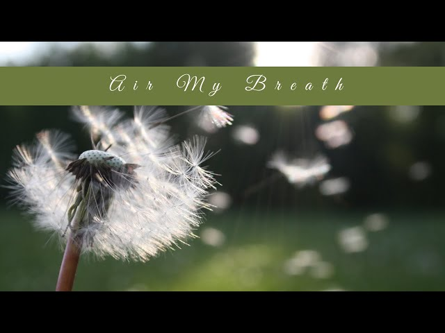 Meditation with the Elements: Air my Breath