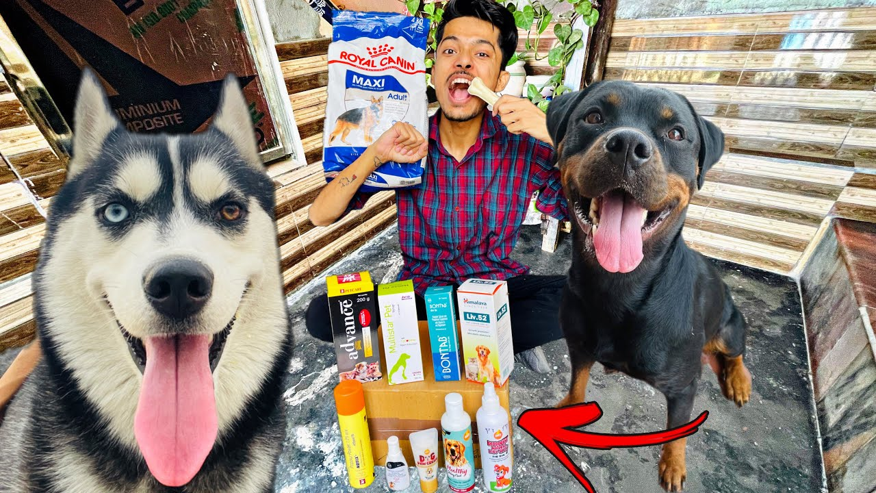 Expensive Shopping For My Dogs🛍 || I Reviewed all products (Dogs hairfall, dog Growth, Dogs height)