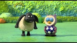 Timmy tijd - Timmy speelt met een bal