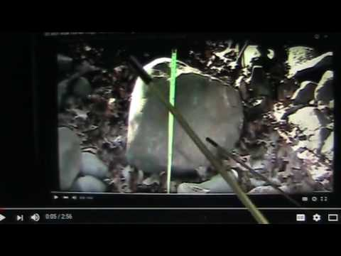 Mudfossils part 18 ..The origin of Stonehenge