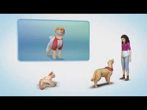 Youtube Gameplay Sims  Cat And Dog