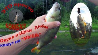Рыбалка на реке Лебедь ловим щук и окуней на Мышь днем