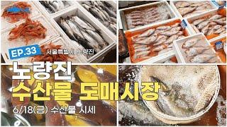 6/18(금) 노량진 수산시장 수산물 활어 시세(흑점줄…