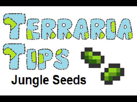 Terraria Tips Jungle Seed Farming Youtube