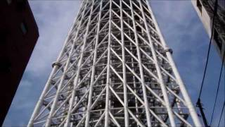 The Magnificent Tokyo Sky Tree, World's Tallest Tower, Tokyo, Japan
