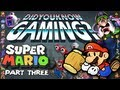 Mario Part 3 - Did You Know Gaming Feat. Yungtown