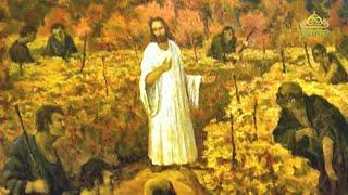 Читаем Евангелие вместе с Церковью 31 января 2020. Евангелие от Марка. Глава 12, ст. 1–12.