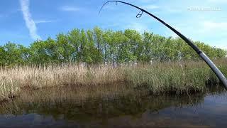 FISHING РЫБАЛКА на СПИННИНГ ЛОВЛЯ ЩУКИ на ПОВЕРХНОСТНЫЕ приманки